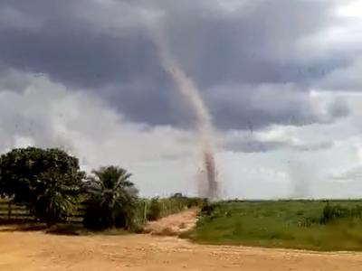 Tornado assusta moradores em zona rural do Paraná; veja vídeo